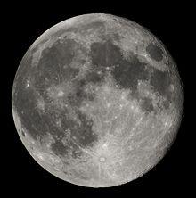mesic