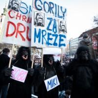 goril_200_200