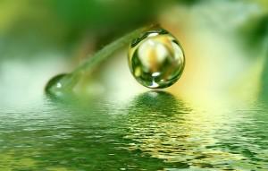 raindrop1-300x1911